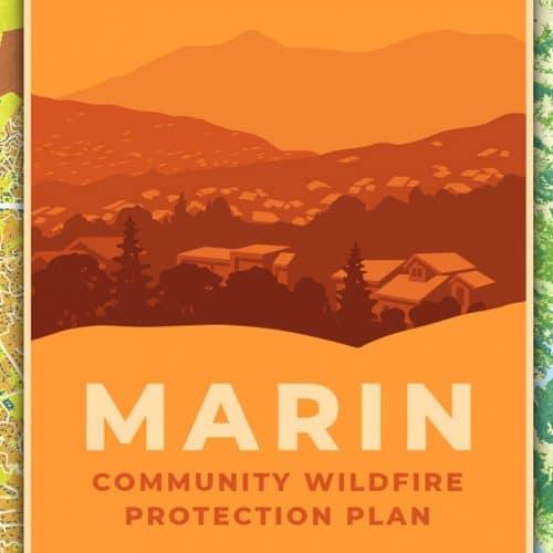 Best of Marin